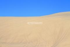 San Dunes Landscape