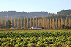 Farm in the Fall photo thumbnail