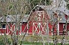 Barn Thourgh Tree Branches photo thumbnail
