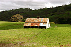 Green Grass and Old Barn photo thumbnail